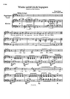 Wieder möcht ich dir begegnen, S.322: Klavierauszug mit Singstimmen by Franz Liszt