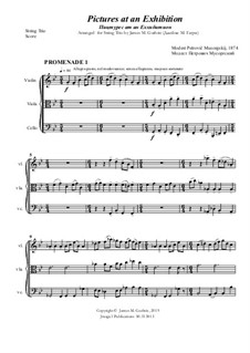 Complete Cycle: For String Trio by Modest Mussorgsky