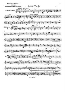 Artist's Life, Op.316: French horn I part by Johann Strauss (Sohn)