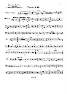Artist's Life, Op.316: Timpani part by Johann Strauss (Sohn)