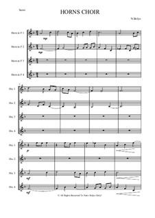 Horn's Choir: Horn's Choir by Nativ Belyo