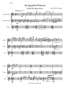 An Egyptian Princess: For alto and tenor recorders and guitar by David W Solomons