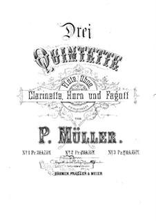 Wind Quintet No.2 in C Minor: Wind Quintet No.2 in C Minor by Peter Müller