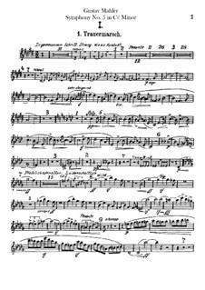 Symphony No.5 in C Sharp Minor: Flutes parts by Gustav Mahler