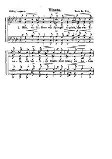 Vineta: Vineta by Franz Wilhelm Abt