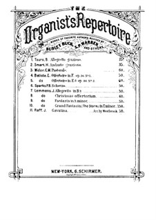 Six Pieces for Violin and Piano, Op.85: No.3 Cavatina. Version for organ by Joseph Joachim Raff