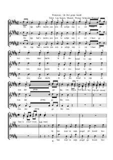 Winterreise, Nr.26-97, Op.23: Nr.96 Het grijze hoofd by Werner Schneider-Wiegand