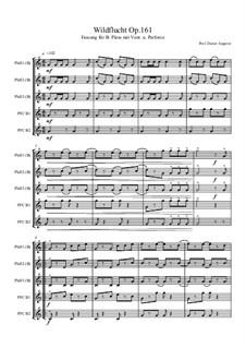 Wildflucht, Op.161: Wildflucht by Dieter Angerer