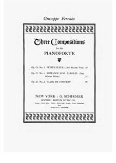 Valse de Concert, Op.25 No.2: Valse de Concert by Giuseppe Ferrata