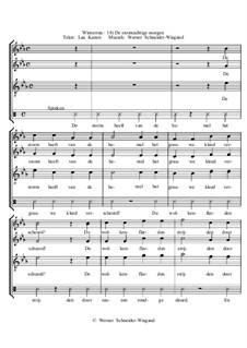 Winterreise, Nr.73-100, Op.23: No.100 De stormachtige morgen by Werner Schneider-Wiegand