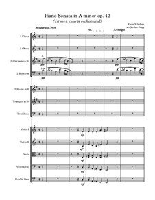 Sonata for Piano No.16 in A Minor, D.845 Op.42: Movement I (excerpt orchestrated) by Franz Schubert