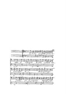 Acclamationi Divote a voce sola, Op.10: En homo qui prote partitur by Giovanni Legrenzi
