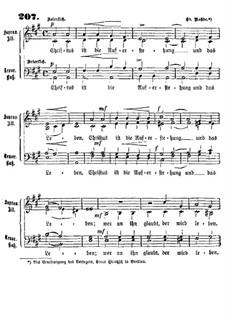 Christus ist die Auferstehung: Christus ist die Auferstehung by Eduard Rohde