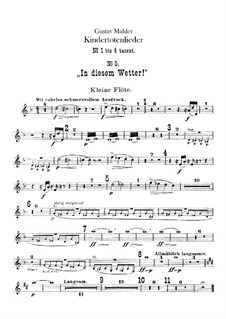 Kindertotenlieder (Songs on the Death of Children): Flutes parts by Gustav Mahler