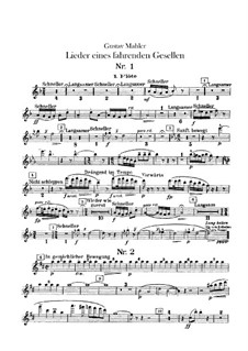 Lieder eines fahrenden Gesellen (Songs of a Wayfarer): For voice and orchestra – flutes parts by Gustav Mahler
