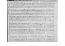 Un tormentoso affanno for Voice and Basso Continuo, SF A360: Un tormentoso affanno for Voice and Basso Continuo by Benedetto Marcello