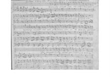 Vi raccolgo in questo seno for Voice and Basso Continuo, SF A366: Vi raccolgo in questo seno for Voice and Basso Continuo by Benedetto Marcello