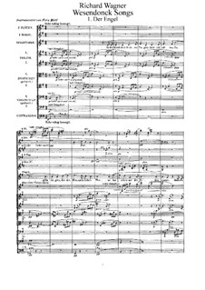 Wesendonck Songs, WWV 91: For voice and orchestra by Richard Wagner