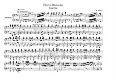 Merry Fellows: For piano four hands by Franz von Suppé