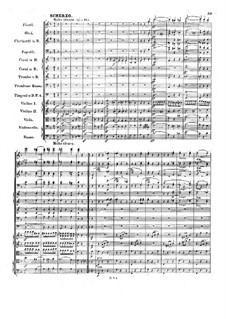 Symphony No.1 in B Flat Major 'Spring', Op.38: Movement III by Robert Schumann