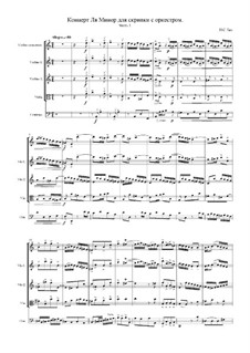 Concerto for Violin, Strings and Basso Continuo No.1 in A Minor, BWV 1041: Movement I by Johann Sebastian Bach
