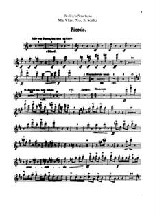 Šarka, T.113: Flutes parts by Bedřich Smetana
