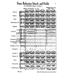 Z českých luhů a hájů (From Bohemia's Woods and Fields), T.114: Full score by Bedřich Smetana