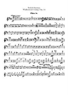Valdštýnův tábor (Wallenstein's Camp), B.111 T.79 Op.14: Flute piccolo part by Bedřich Smetana