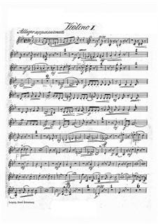 Concert Piece in G Minor, Op.46: Violin I part by Hans Sitt