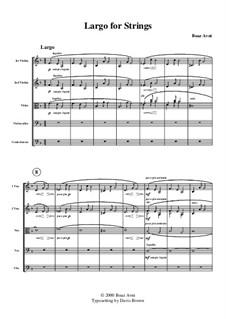 Largo for Strings: Full score by Boaz Avni