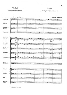 Racing. Etude for Orchestra: Racing. Etude for Orchestra by Franz Berwald