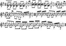 Etude for Guitar in G Major: Etude for Guitar in G Major by Ferdinando Carulli