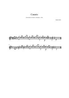 Canario: For guitar by Carlo Calvi