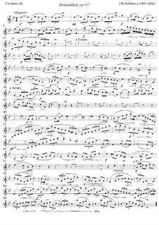 Heimathlied (Homesong) for Soprano, Clarinet and Piano, Op.117: Clarinet part by Jan Kalliwoda