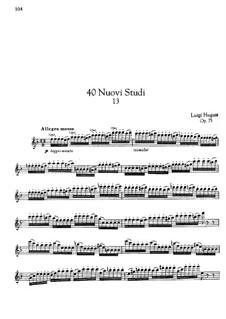 Etude No.13 for Flute, Op.75: Etude No.13 for Flute by Luigi Hugues
