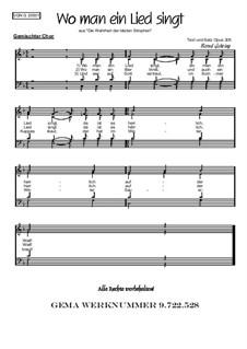 Humor im Chor. Wo man ein Lied singt: Humor im Chor. Wo man ein Lied singt, Op.205 by folklore
