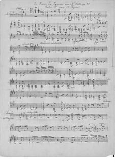 La source du lyson (The Lyson River Spring), Op.47: For guitar (manuscript) by Napoléon Coste