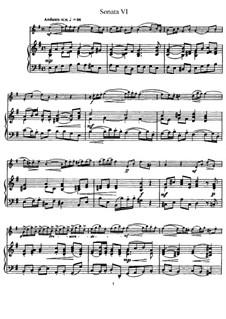 Sonata No.6: Version for flute and piano, solo part by Johann Mattheson