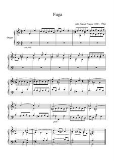Fugue for Organ: Fugue for Organ by Johann Xaver Nauss
