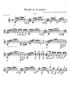Etude in A Minor: Etude in A Minor by Johann Kaspar Mertz