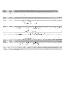 Fantasia on Theme from 'Il Pirata' by Bellini: Fantasia on Theme from 'Il Pirata' by Bellini by Johann Kaspar Mertz