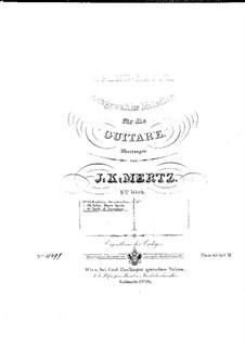 Fragments: For guitar by Giuseppe Verdi