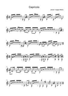 Capriccio in A Minor: Capriccio in A Minor by Johann Kaspar Mertz