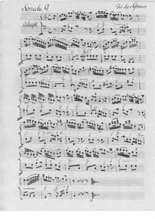 Sonata for Flute and Basso Continuo No.9: Sonata for Flute and Basso Continuo No.9 by Carl Heinrich Graun