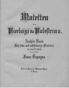 Motets: Volume VI by Giovanni da Palestrina