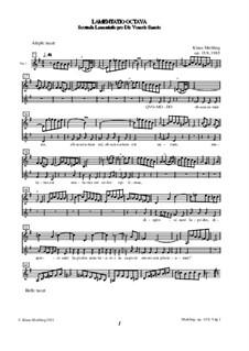 Lamentatio, Op.15: Octava (Stimmen) by Klaus Miehling