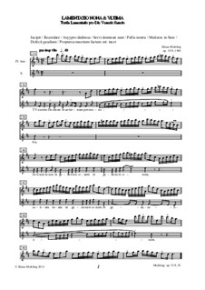 Lamentatio, Op.15: Nona & ultima (Stimmen) by Klaus Miehling