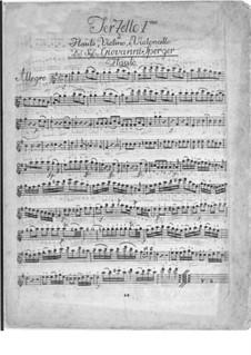 Terzetto for Flute, Viola and Cello in G Major: Terzetto for Flute, Viola and Cello in G Major by Johannes Matthias Sperger