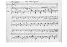 Die Blumensprache (The Language of Flowers), D.519: B flat Major by Franz Schubert