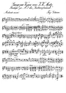Gang zur Vesper für zwei Gitarren: Stimmen by Johann Kaspar Mertz